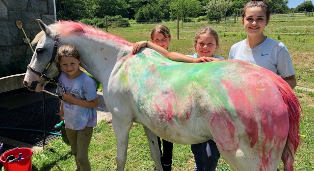 Summer Camp Horse Painting